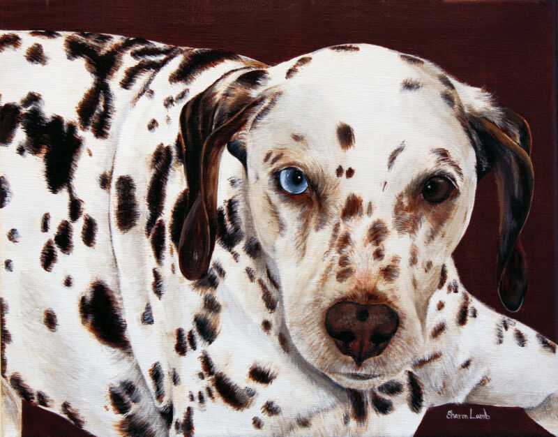 Custom Pet Painting Custom Order Any Animal Artist Sharon Lamb