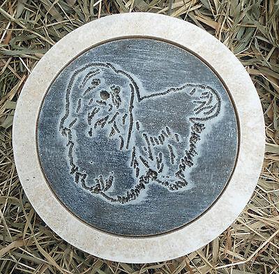 Maltese dog plastic mold concrete casting plaster mould