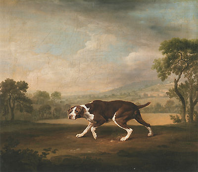 1766 Spanish Pointer, Antique painting, GEORGE STUBBS ART, 16x14 CANVAS