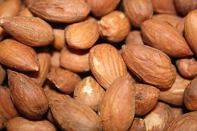 ALMONDS Fresh Bulk ROASTED SALTED Whole Sweet California Almond Kernels 2lbs Whole Roasted Almonds