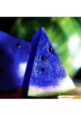 10x Rare Blue Watermelon Seeds Vegetable Organic Home Garden Variety - Organic Vegetable Seed