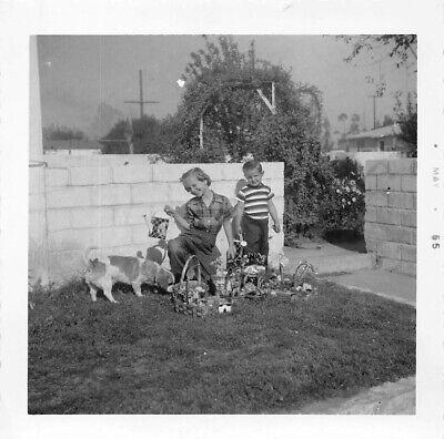 LITTLE DOG SNIFFS OUT HER EASTER BASKET - 1950s KIDS GIFTS CANDY VTG PHOTO 128