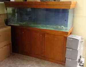 6 foot fish tank with stand Brisbane City Brisbane North West Preview