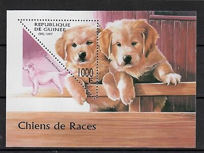 (W1238) GUINEA, 1997, DOGS, BL. 514, MNH/UM, SEE SCAN