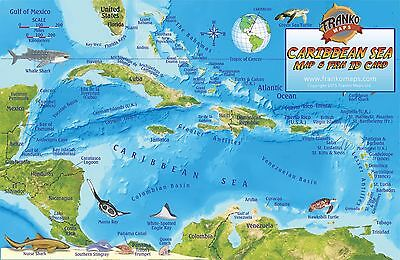 Caribbean Sea Coral Reef Creatures Guide & Map Laminated Fish Card Franko Maps Coral Sea Reef Guide