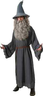 Gandalf Grey Lord of the Rings Hobbit Wizard Fancy Dress Halloween Adult Costume