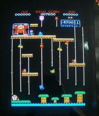 Original Donkey Kong Jr PCB 2-Board Set - Nintendo, Fully Tested, Working
