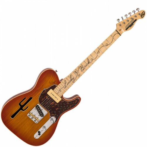 Joe Doe by Vintage - Lucky Buck Guitar - Honeyburst