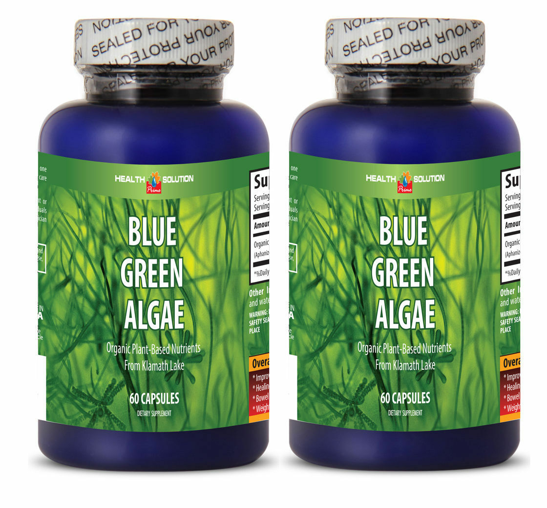 Chorella Extract - BLUE GREEN ALGAE 500MG - Detoxes Body Fro
