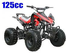 125cc QUAD  Raptor Style... Capalaba Brisbane South East Preview