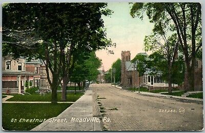Used, MEADVILLE PA CHESTNUT STREET ANTIQUE POSTCARD  for sale  Shipping to Canada