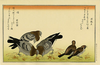 "Large UTAMARO Japanese woodblock print: ""TREE SPARROW and PIGEON"""