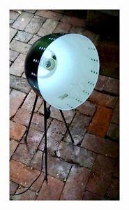 Lamp Mosman Park Cottesloe Area Preview