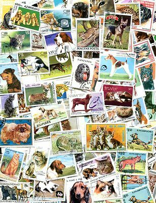 FINE COLLECTION OF CATS AND DOGS - ALL DIFFERENT POSTAGE STAMPS