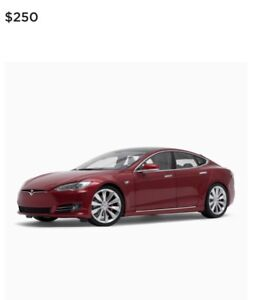 vehicule de collection Diecast 1:18 Scale Model S P100D