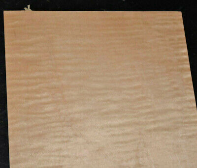 Curly Maple Raw Wood Veneer Sheets 8 X 31 Inches 142nd Blemished 6924-26