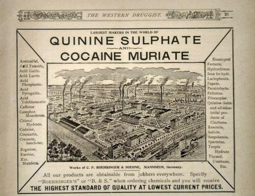1896 Cocaine Muriate Factory Art Anesthetic Pharmaceutical Print Advertising