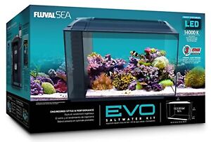 Cheap fish tank for sale,This is used。