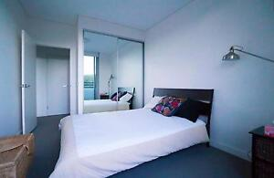 Furnished 2BR – Share with one - WENTWORTH POINT Ryde Area Preview