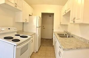 Beautifully Renovated-2 Bedroom Apartment Available
