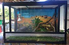 Reptile Terrarium Clifton Beach Cairns City Preview