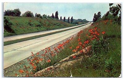 1953 Greetings from Spirit Lake, IA Postcard