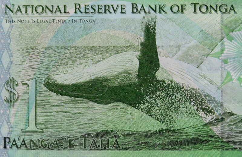 HUMPBACK WHALE Banknote 2009 Kingdom of Tonga Paper Money 1 Pa'Anga Uncirculated