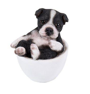 Boston Terrier Statues - Black and White Boston Terrier  Puppy Dog Teacup Pet Pal Mini Figurine Statue