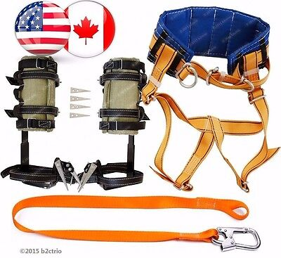 Tree Climbing Spike Setspurssafety Belt Harness Saddlesafety Lanyard Arborist