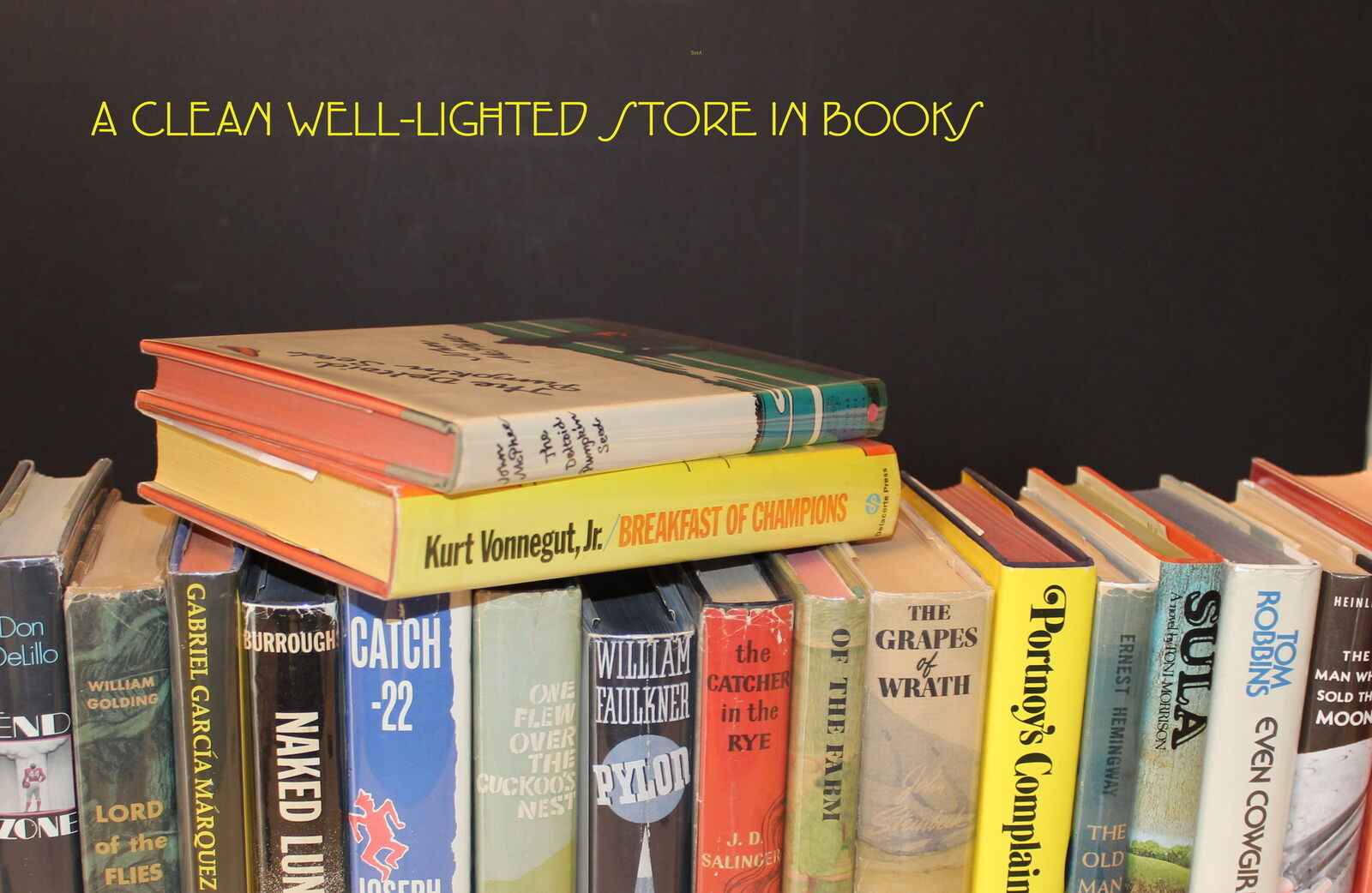 A Clean Well-Lighted Store in Books