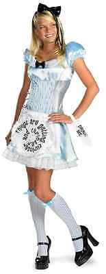Halloween Classic Cartoons (Alice in Wonderland Classic Disney Cartoon Fancy Dress Halloween Adult Costume)