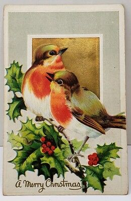 A Merry Christmas Birds On A Holly Branch Gold Dust Accents c1910 Postcard D9