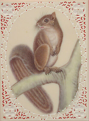 Animal Squirrels Handmade Indian Miniature Painting Artwork Artist Gallery tree