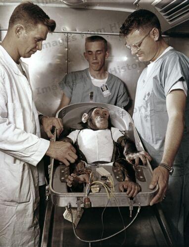 8x10 Print NASA Project Mercury MR-2 Handlers With HAM The Chimp 1961 #5501210