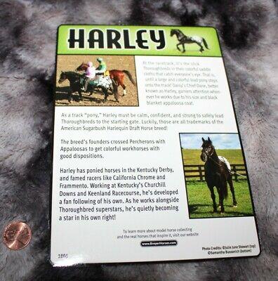 #1805 Breyer Horse Information Card, Percheron Appaloosa, Harley,