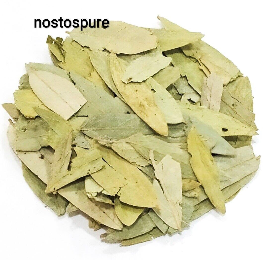 Senna getrockneten Blättern,Cassia Senna Kraut,10g-425g Abführmittel