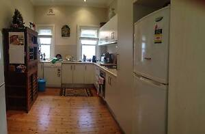 Lovely furnished bedroom, Kingsford for 5 months Oct 6 to Feb 28 Kingsford Eastern Suburbs Preview