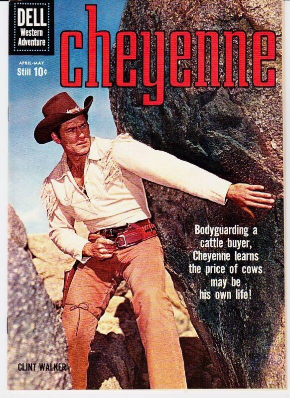 CHEYENNE # 15  DELL