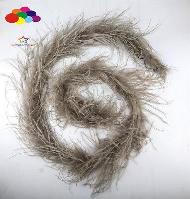 Diy Cool Costumes (2 M Ostrich feather strip Trim boa Dyed cool gray carnival Diy costume)