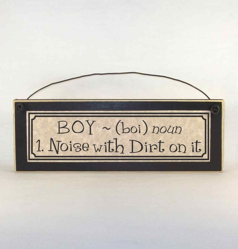BOY  ~ (boi) noun 1. Noise  with Dirt on it - Funny sign about having boys