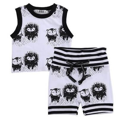 Schwarz Babyshirt (Baby Jungen Set Shirt und Hose IGEL in schwarz-weiss Gr. 62 68 74 80)