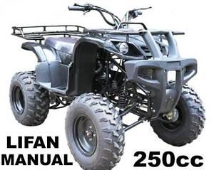 250cc  FARM QUAD ... NEW Capalaba Brisbane South East Preview