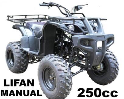 250cc  FARM QUAD ... NEW