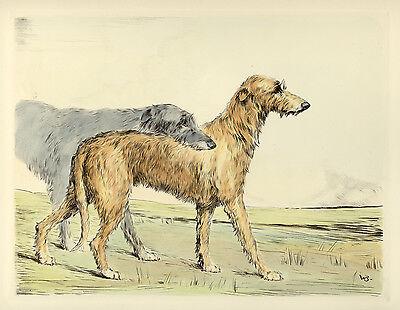 DEERHOUND SCOTTISH LURCHER DOG FINE ART ENGRAVING PRINT - by Ruben Ward Binks