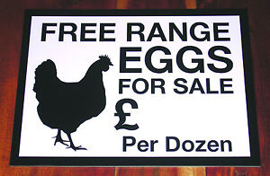 Plastic FREE RANGE EGGS FOR SALE Sign. FREE POST. Price can be added for you.