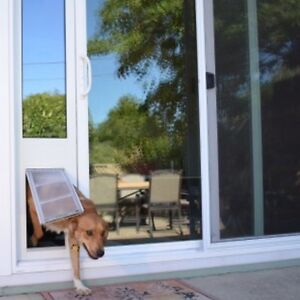 Doggy door for large dog