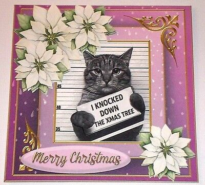 Handmade Greeting Card 3D Christmas Humorous With A Cat And A Mugshot ()