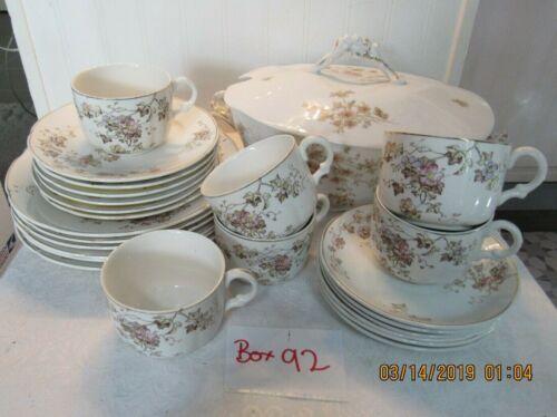 Antq Royal Semi-Porcelain Alfred Meakin England Transfer Ware 25 pc.Dish Set