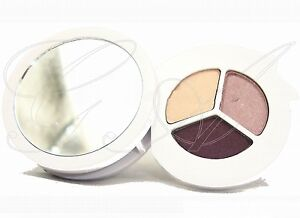 CLINIQUE Eyeshadow Colour Surge Eye Shadow Trio in Come Heather 3 colours