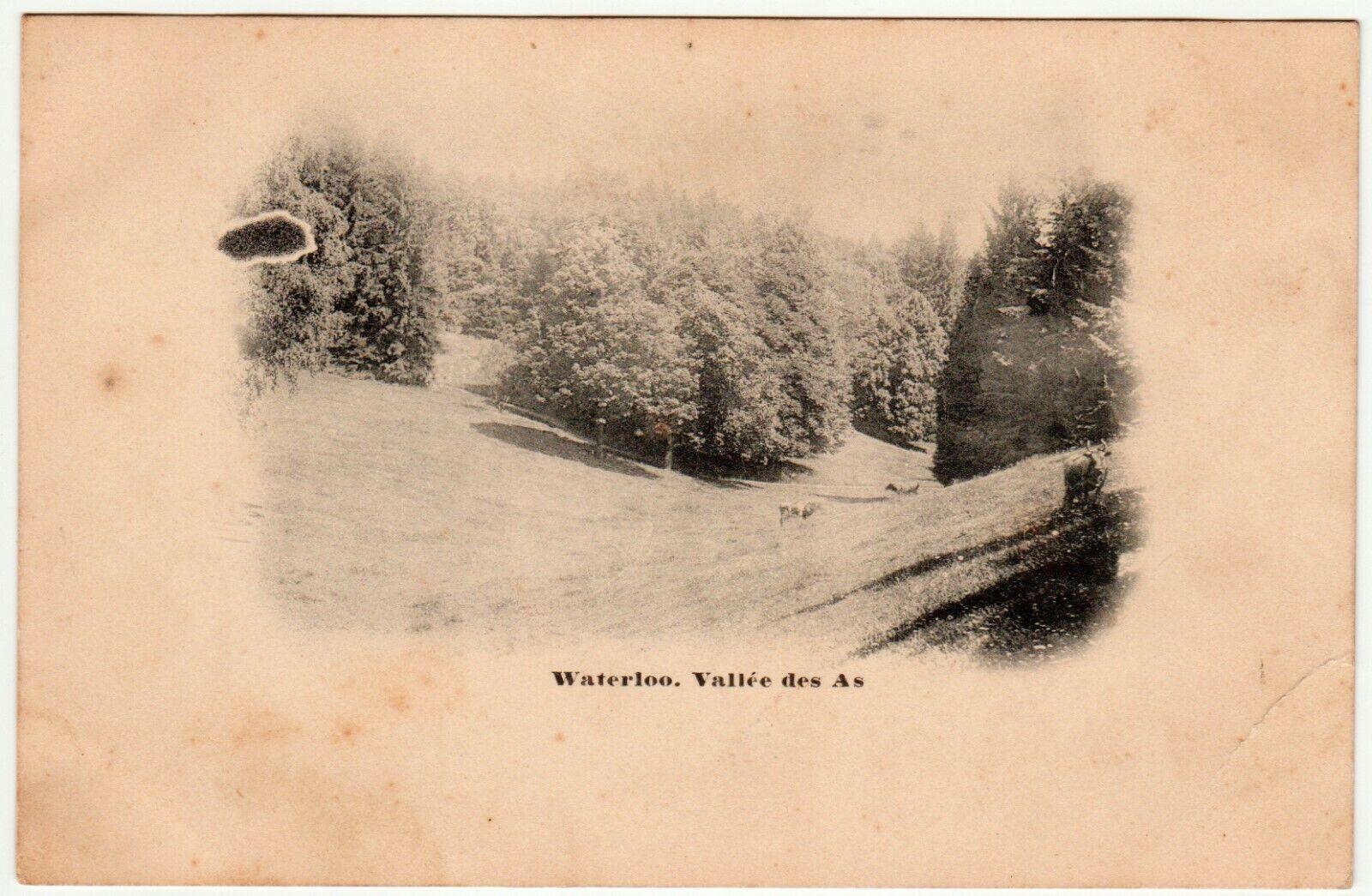 Carte Postale WATERLOO Vallée des As. Postkaart Waterloo